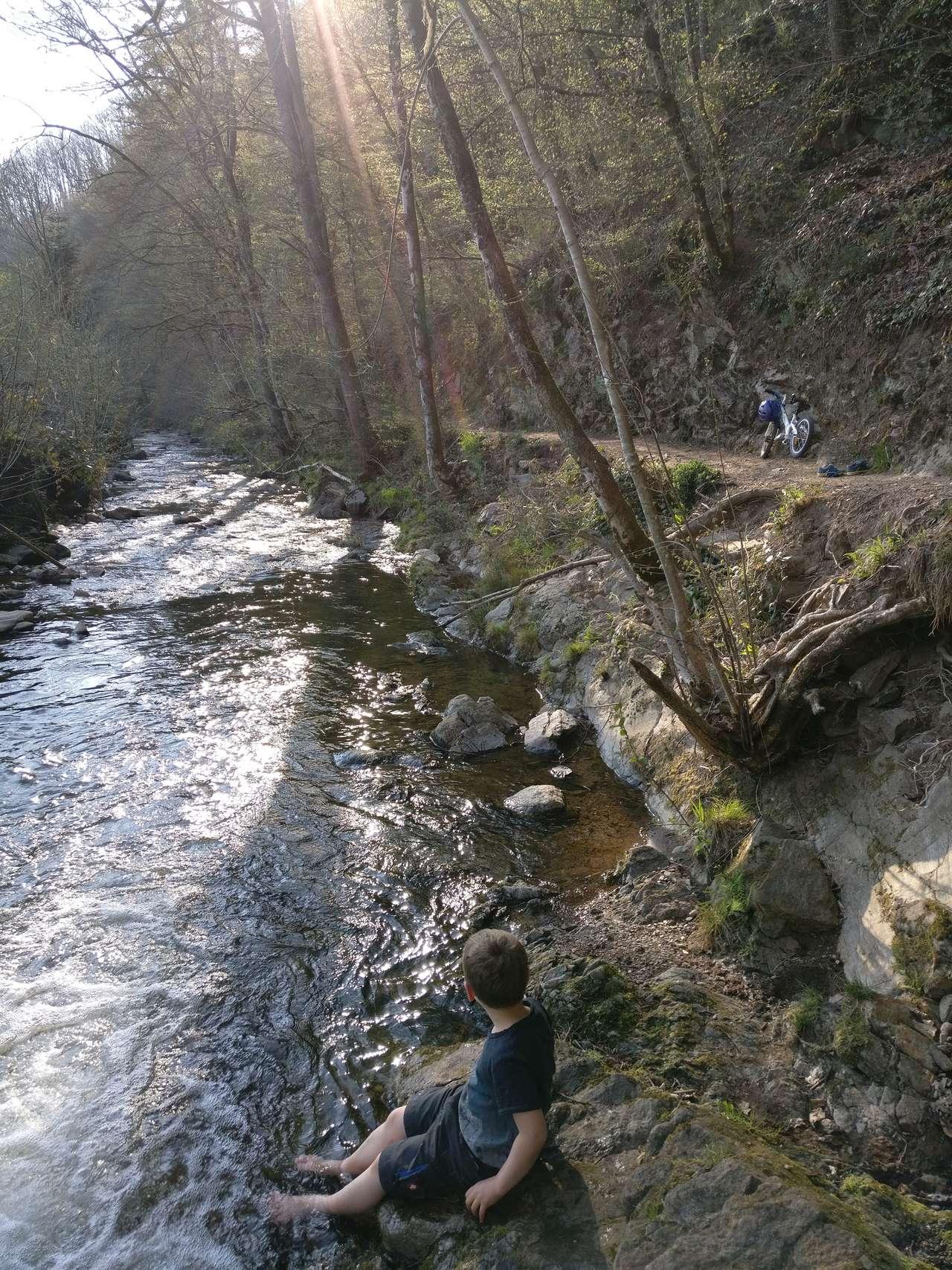 Am Harmersbach geht es auf einem schönen Pfad entlang